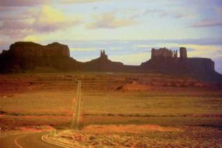Arizona 231 (2)