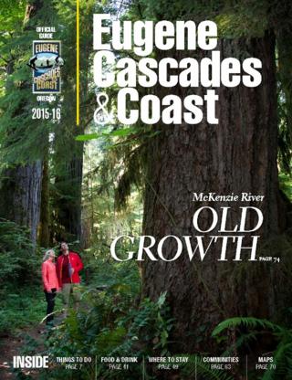 ECCVG15_Cover_Cascades (2) (616x800)